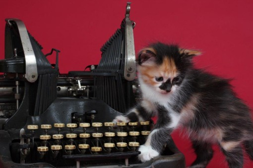 Heidi & Typewriter IMG_2774