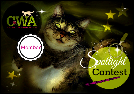 CWA member spotlight contest