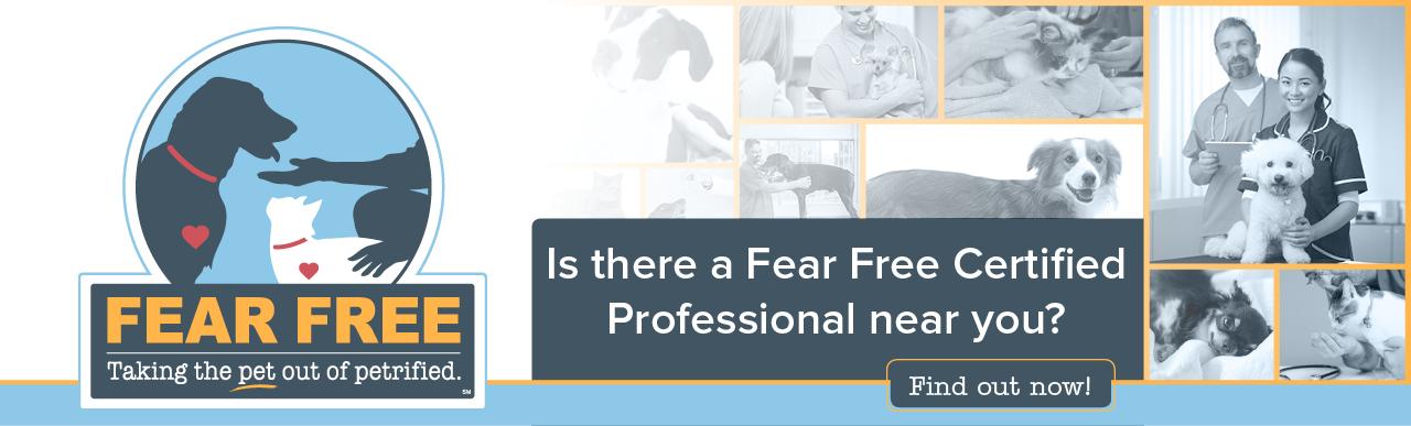 Fear Free Pets