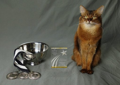 Cat Writers Communication Contest Awards